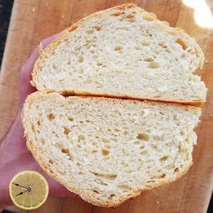 Cuban Bread soft crumb interior